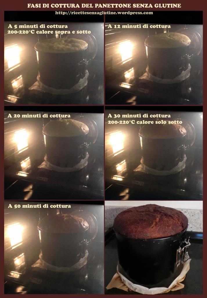 Panettone senza Glutine - Fasi di Cottura